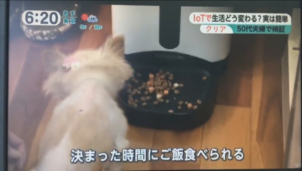 テレビで紹介された自動餌やり機
