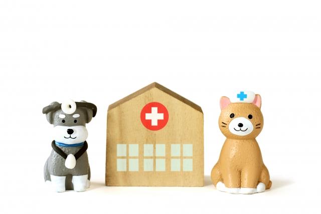 犬と猫の動物病院